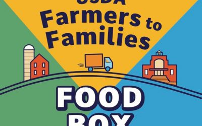 """DiMare Fresh Approved for Second Round of Funding by USDA for """"Farmers to Families Food Box"""" Program"""