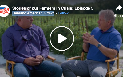 Tony DiMare's Interview with Demand American Grown